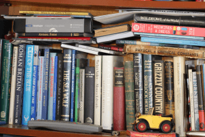 save money on used books
